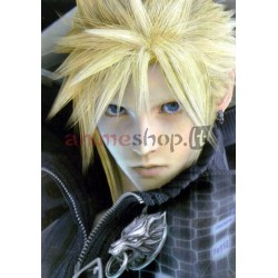 Final Fantasy atvirutė, Nr.2009