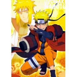 Naruto atvirutė, Nr.5011